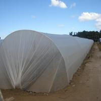 Buy cheap PP Nonwoven fabric  for agriculture to protect plants from frost, wind, rain and pests from wholesalers