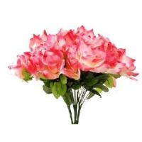 Buy cheap Weddinb Rose Bush from wholesalers