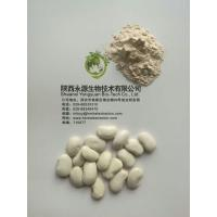 Buy cheap Phaseolin1-3% Off White Phaseolus Vulgaris Extract Powder White Kidney Bean Extract from wholesalers