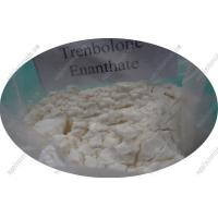 Buy cheap No Side Effect Oral Anabolic Steroids Trenbolone Enanthate CAS 10161-33-8 for Muscle Gain from wholesalers