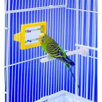 Buy cheap mirror with beads plastic bird toy for added funs suitable for budgies from wholesalers