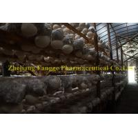 Buy cheap Hericium erinaceus extract 20%-50%,GMP/HACCPcertificate,edible and medicinal mushroom from wholesalers
