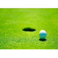 Buy cheap Real Looking Office / Residential Indoor Golf Putting Mat Waterproof Artificial Grass from wholesalers