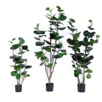 Buy cheap Multi Stems Artificial Outdoor Plants Nearly Natural Silk  Polyscias Balfouriana Bailey from wholesalers