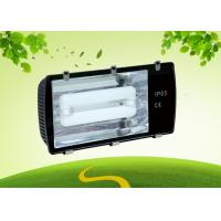 Buy cheap 250 Watt Induction Light 5000K , 85lm / W LED Tunnel Lamp For Outdoor product