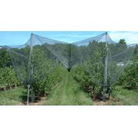 Buy cheap Anti Hail Netting from wholesalers