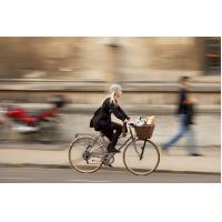 Buy cheap lady bicycle with dynamo coaster brake for sale from wholesalers