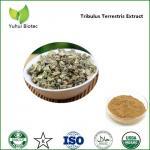 Buy cheap tribulus extract,tribulus terrestris extract powder,tribulus terrestris 90% saponins from wholesalers