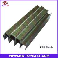 Buy cheap P88 Staples Series for Pneumatic gun 10mm,13mm,16mm,19mm,22mm,25mm from wholesalers