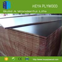 Buy cheap Co-operation partner wanted cheap chinese products ply wood board for sale from wholesalers