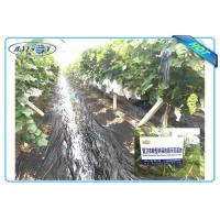 Buy cheap Anti UV PP Non Woven Landscape Fabric for Agricultural Area as Ground Coverings or Plant Bags from wholesalers