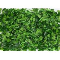 Buy cheap Outdoor Artificial Green Plants , Artificial Garden Plants Eco - Friendly from wholesalers