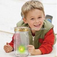 Buy cheap Firefly in A Jar Supplier From China from wholesalers