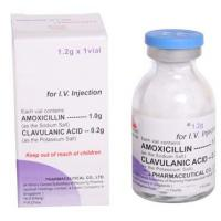 What Is Amoxil Used For