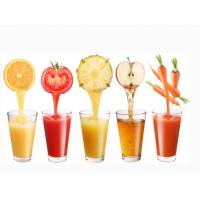 Buy cheap Orange Lemon Juice 100LPH Beverage Processing Equipment With Vacuum Storage Tanks product