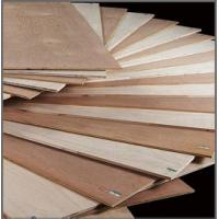 Buy cheap middle east  market bintangor plywood high quality from wholesalers