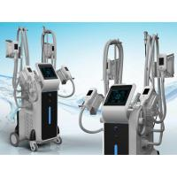 Buy cheap Antifreeze Weight Loss Fat Freezing burning Slimming cryolipolysys Cryotherapy Machine from wholesalers