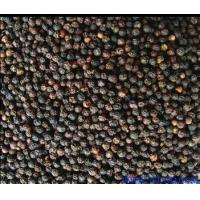 Buy cheap Piperine 95% Cas:94-62-2 Chinese Herbal Extract Piper Extract , Additive For Brand from wholesalers