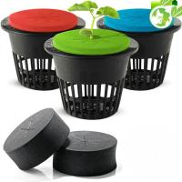 Buy cheap Root Growing Cloning Collar Inserts PE Hydroponic Foam from wholesalers