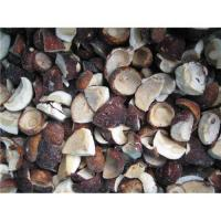 Buy cheap Sell wild mushroom from wholesalers