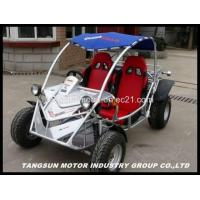Buy cheap TS300-2DX   EEC Buggy; Go Kart ;On Road Go Cart;Kart from wholesalers