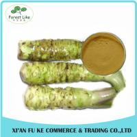 Buy cheap Hot Sale Free Sample Fresh Horseradish Extract Powder from wholesalers