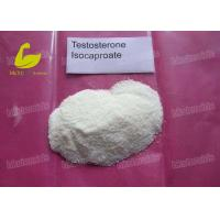 Buy cheap Testosterone Isocaproate Muscle Building Steroids Anabolic Androgenic Steroids Test Isocaproate from wholesalers