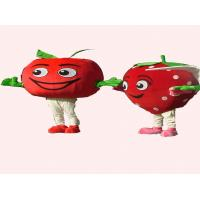 Adults Strawberry Advertising Mascot Cartoon Cosplay Fruit