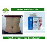 Buy cheap Botanical Weight Loss Patch Graceful Slimming Belly Fat Patch For Detox / Thin Waist from wholesalers