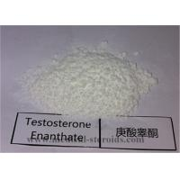 Buy cheap 99.5% Purity USP Standard Steroid Testosterone Enanthate CAS 315-37-7 for Bodybuilding from wholesalers
