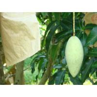 Buy cheap Growing bag for mango cheap price from wholesalers