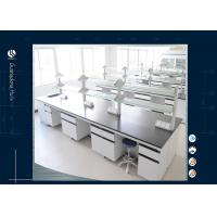 Buy cheap Heat Resistant Laboratory Benches And Cabinets , Twin Free Design Science Lab Desks from wholesalers