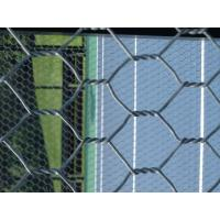 Buy cheap 16 AWG Galvanized Welded Wire Mesh Fencing For Building Paddle / Tennis Courts from Wholesalers