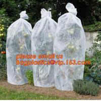 Buy cheap PP Non Woven Fabric Fruit Tomato Banana Bunch Cover Garden Plant Protection Cover For Winter,Eco-friendly Household Non from wholesalers