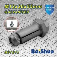 China Carbon steel  Zinc plated Hot dip Galanised Expansion Hex Anchor Bolt Grade 8.8 on sale