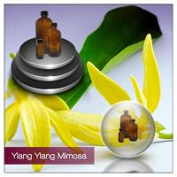 Buy cheap Aphrodisiac ylang ylang Essential Oils for Sex, Libido, Romance,Aphrodisiac Ylang Ylang Oils For Men from wholesalers