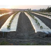 Buy cheap Plastic mulch film from wholesalers