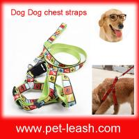 Buy cheap Thermal transfer ribbon double polyester dog rope Chest straps QT-0062 from wholesalers