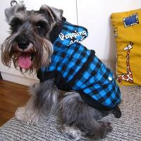 Buy cheap winter coats for dogs,dog warm coats,down coats for dogs from wholesalers