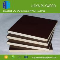 Buy cheap Waterproof 20mm thk powder coating plywood sri lanka price list from wholesalers