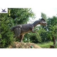 Buy cheap Forest Decoration Handmade Dinosaur Garden Statue Life Size Real Dinosaur Models from wholesalers