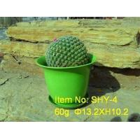 Buy cheap Flower Pot-SHY-4 from wholesalers
