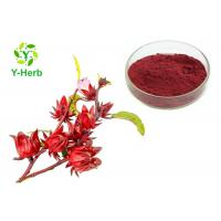Buy cheap Hibiscus Sabdariffa Extract Powder Ruselle Roselle Calyx P.E.  Anthocyanins from wholesalers