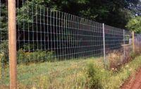 Buy cheap Plastic Cat Fence Netting from wholesalers
