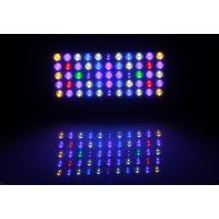 Buy cheap Freshwater Reef Blue Led Aquarium Lights With Controller , Aquarium Led Plant Light from wholesalers