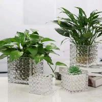 Buy cheap wholesale square potted plant glassware suppliers/ glass vase from wholesalers