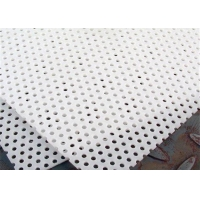 Buy cheap Food Grade 1000mm Length  3mm Plastic Perforated Sheet from wholesalers