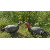 Buy cheap Supply hunting decoy/turkey decoy/ 3D animal xpe hunting turkey decoy from wholesalers