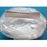 Buy cheap Primobolan Enanthate Steroids 303-42-2 Raw Steroid Powders Primobolan / Methenolone Enanthate Powder from wholesalers