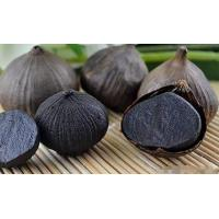 Buy cheap 100% Fermented Black Garlic Extract 20:1 powder from wholesalers
